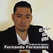 A Flor de Piel de Fernando Fernandez