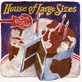One Big Cake by House of Large Sizes