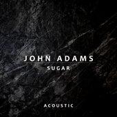 Sugar (Acoustic) di John Adams