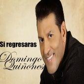 Si Regresaras by Domingo Quinones