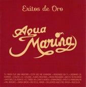 Éxitos de Oro by Aguamarina
