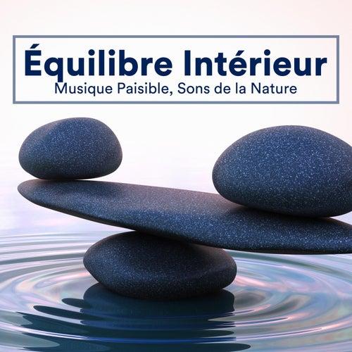 Équilibre Intérieur - Musique Paisible, Sons de la Nature pour Retrouver votre Calme Perdu by Oasis de Détente et Relaxation