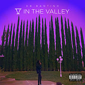5 in the Valley by Db Bantino
