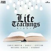 Life Teaching Riddim by Various Artists
