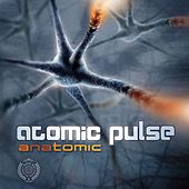 Anatomic by Various Artists