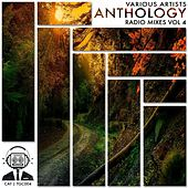Anthology Radio Mixes, Vol. 4 - EP by Various Artists