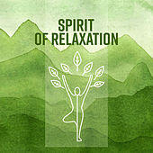Spirit of Relaxation by Meditation Awareness