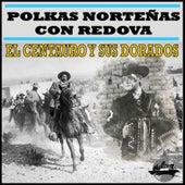 Polkas Norteñas Con Redova by El Centauro Y Sus Dorados