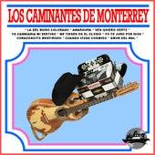 La del Moño Colorado by Los Caminantes de Monterrey