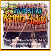 Cumbias de Marimba Chelito