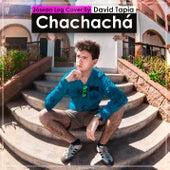 Chachachá by David Tapia