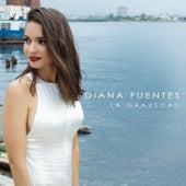 La Gravedad by Diana Fuentes