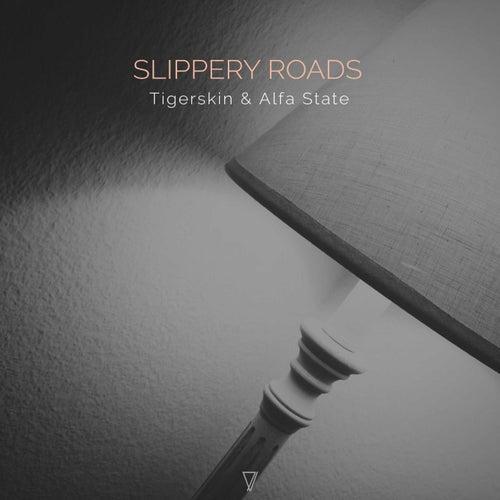 Sleepery Roads by Tigerskin