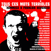 Tous ces mots terribles (Hommage à François Béranger) de Various Artists