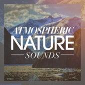 Atmospheric Nature Sounds de Various Artists