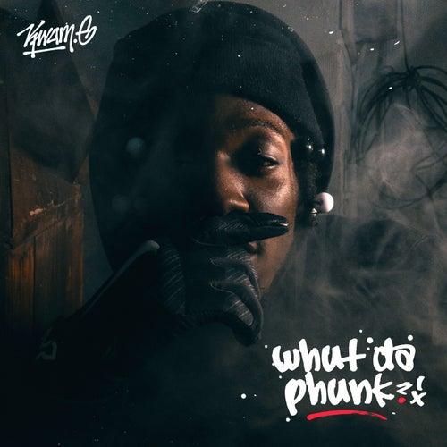 Whut da Phunk by Kwame