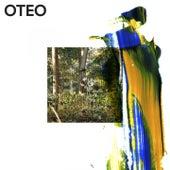 You're Lost von Oteo