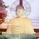 71 Streams Of Serenity by Yoga Music