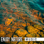 Enjoy Nature Music de Nature Sounds Artists