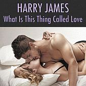 What Is This Thing Called Love von Harry James