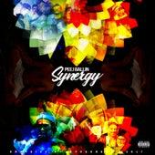 Synergy by PeejBallin