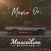 Can't Tell You No by Muscadine Bloodline