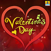 Valentine's Day Love Hits by Various Artists