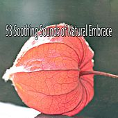 53 Soothing Sounds of Natural Embrace von Entspannungsmusik