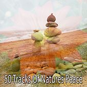 50 Tracks Of Natures Peace de Nature Sounds Artists