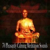 70 Pleasantly Calming Meditation Sounds de Meditación Música Ambiente