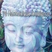 76 Harmonious Ambience de Meditación Música Ambiente
