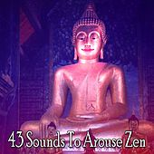 43 Sounds To Arouse Zen von Lullabies for Deep Meditation