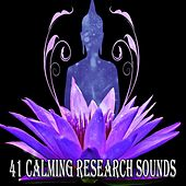 41 Calming Research Sounds by Classical Study Music (1)