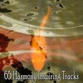 65 Harmony Inspiring Tracks de Meditação e Espiritualidade Musica Academia