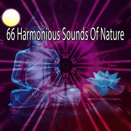 66 Harmonious Sounds Of Nature by Massage Tribe