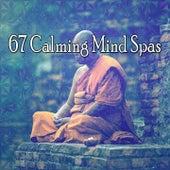 67 Calming Mind Spas von Massage Therapy Music