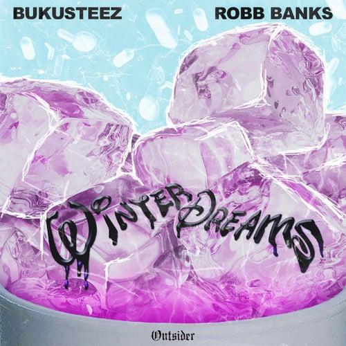 Winter Dreams by BukuSteez
