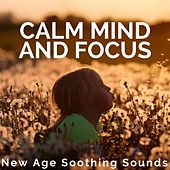 Calm Mind and Focus: New Age Soothing Sounds for Better Concentration by Calm Music for Studying