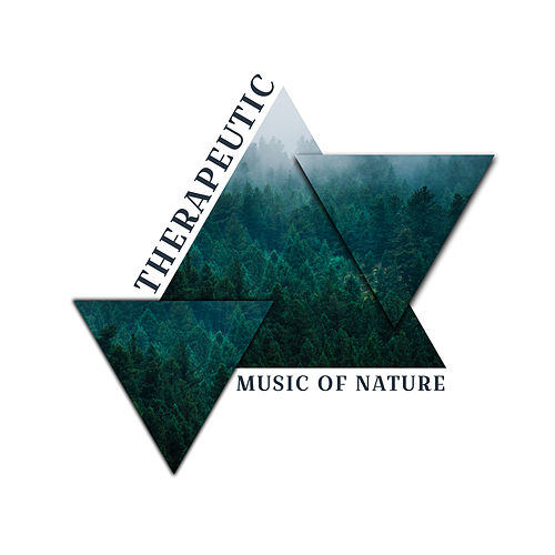 Therapeutic Music of Nature by Echoes of Nature