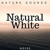 Natural White: Noise and Nature Sounds for Deep Sleep and Massage by Asian Music Academy