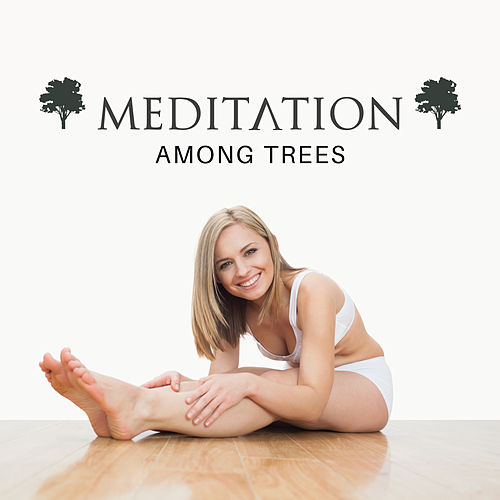 Meditation Among Trees by Nature Sounds (1)