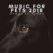 Music for Pets 2018 - Songs to Relax and Calm Cats, Fight Dog Anxiety by Pet Music World