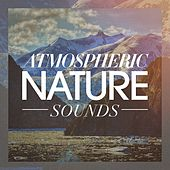 Atmospheric nature sounds by Various Artists