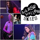 Marshmallow Skies (Live) von Pink