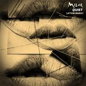 Quiet (Attom Remix) by Milck