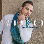 Instantes Nuevos by Tarasco