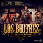 Jalando a Todos by Los Buitres De Culiacan Sinaloa