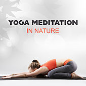 Yoga Meditation in Nature de Nature Sounds Artists