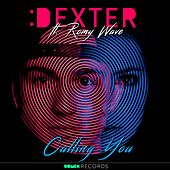 Calling You (feat. Romy Wave) by Dexter