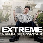 Needle in the Haystack von Extreme the MuhFugga